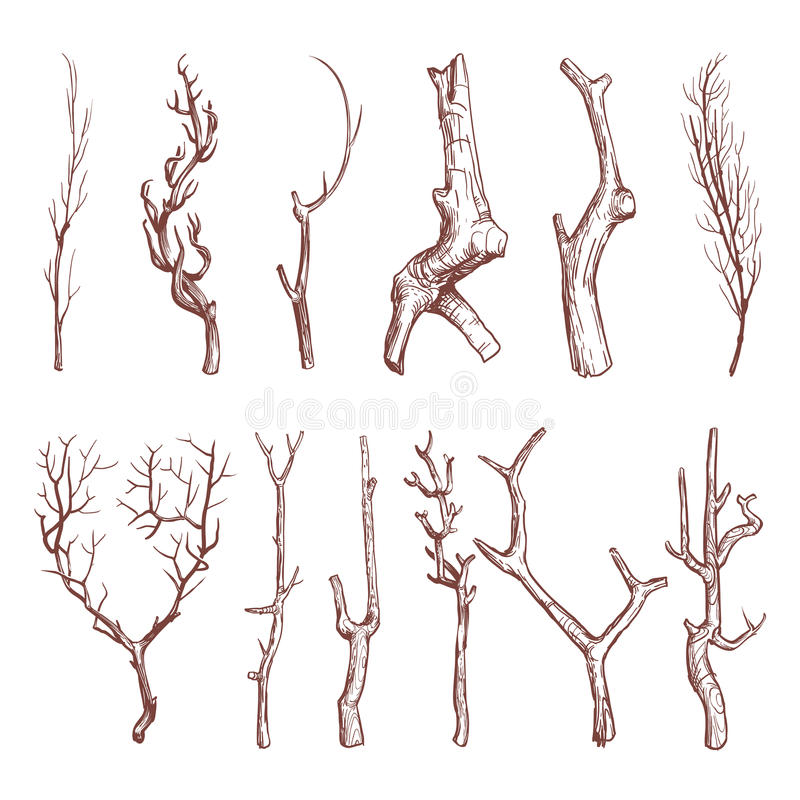 It's just a graphic of Gargantuan Stick Tree Drawing