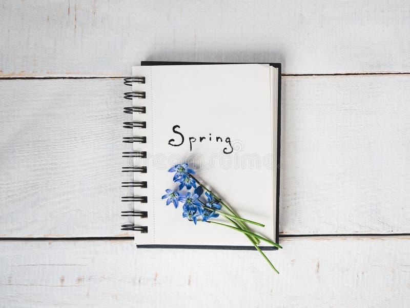 Sketchbook, blanco pagina, heldere bloem en roze lint stock fotografie