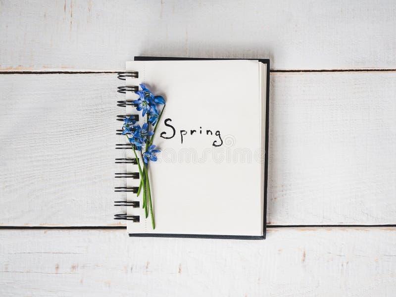 Sketchbook, blanco pagina, heldere bloem en roze lint royalty-vrije stock afbeeldingen