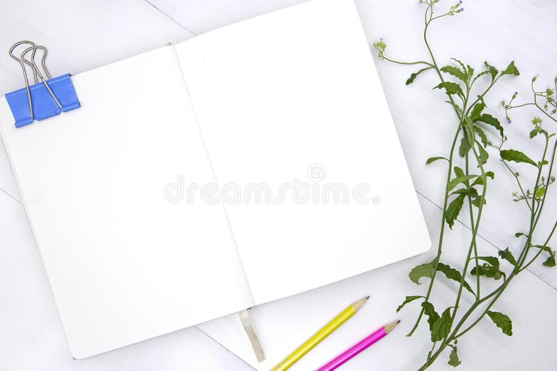 Sketchbook blank page with green leaf and pencil. Open notebook top view photo on white background stock images