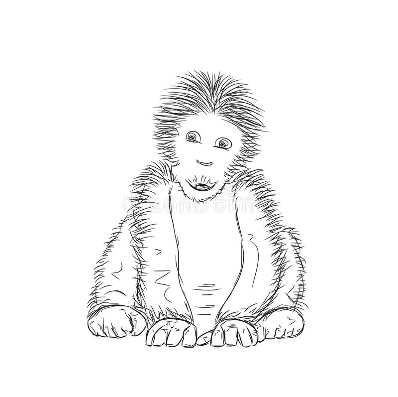 Sketchy Gorilla Vector Illustration stock illustration