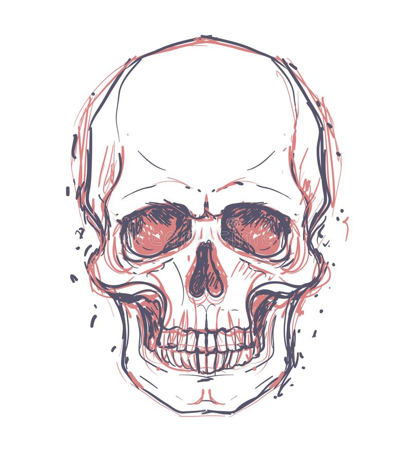 Sketchy style drawing of human skull, human head, isolated on white. Tattoo design element. Vector illustration. stock illustration