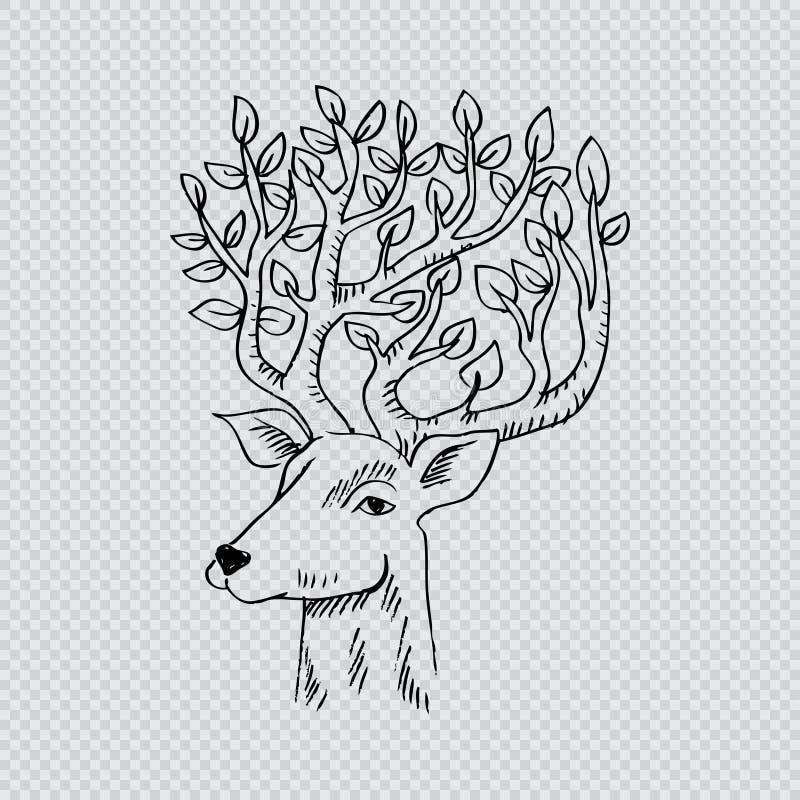 Skethcy de la cabeza de los ciervos libre illustration