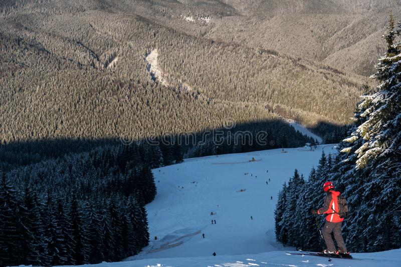 Skiër bij de bovenkant van afdaling die van bergen en bossen genieten stock foto