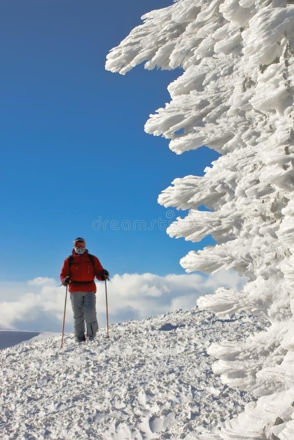 Skiër op de bovenkant van de heuvel dichtbij ijscijfer