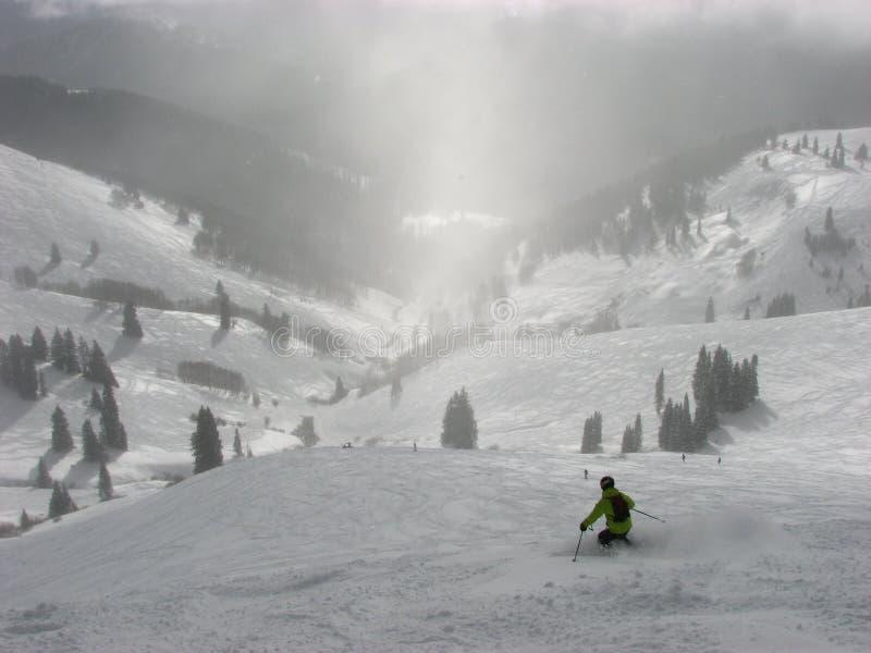 Skiër in Poeder stock foto's