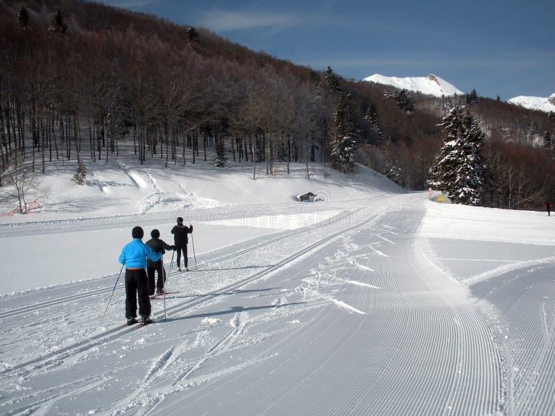 Skiërs in het hele land stock afbeelding
