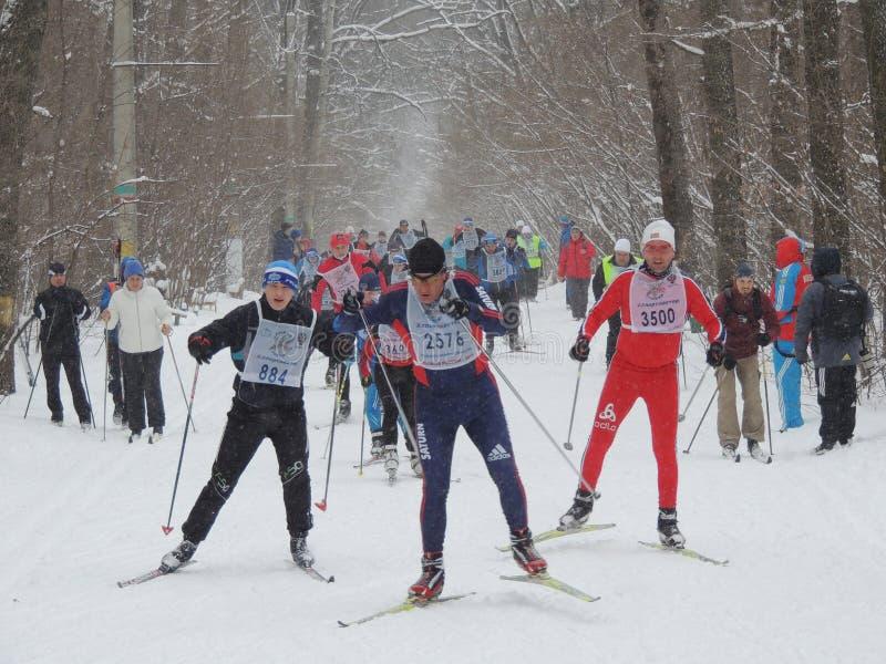 Skiërs op het spoor royalty-vrije stock afbeeldingen