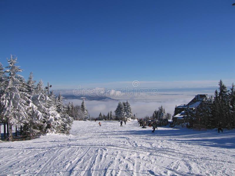 Download Ski stock photo. Image of traveling, resort, movement, slope - 600484