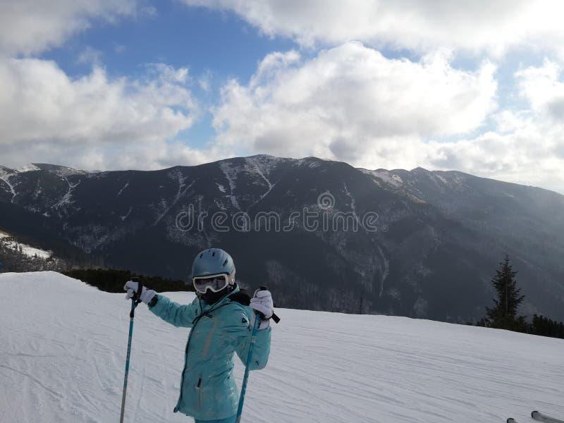 ski stockbild