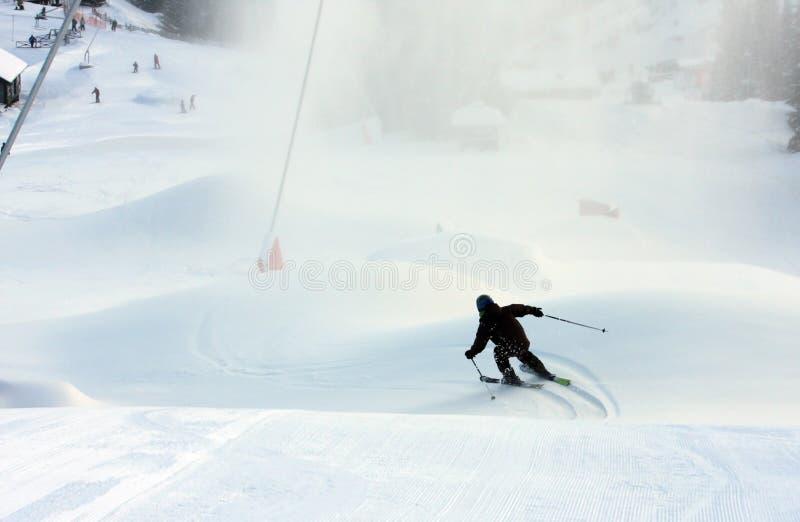 Ski alpestre image stock
