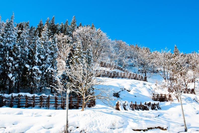 Ski au gala-Yuzawa photo libre de droits