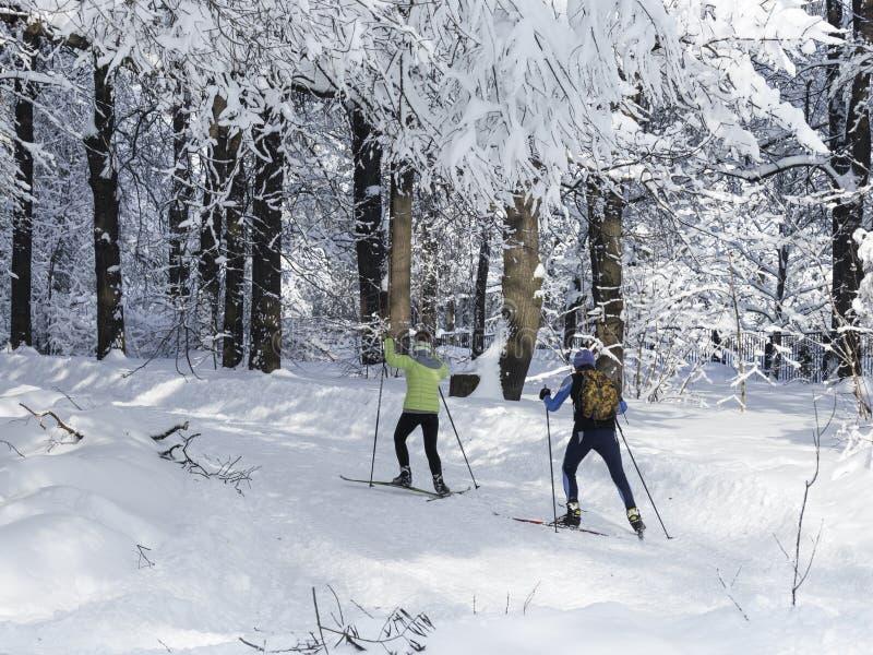 Ski de famille en parc à Moscou image stock