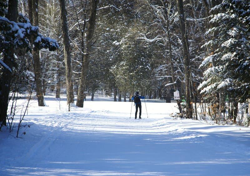 Ski de fond images libres de droits