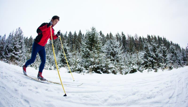 Ski de fond de jeune homme sur une traînée neigeuse de forêt image stock