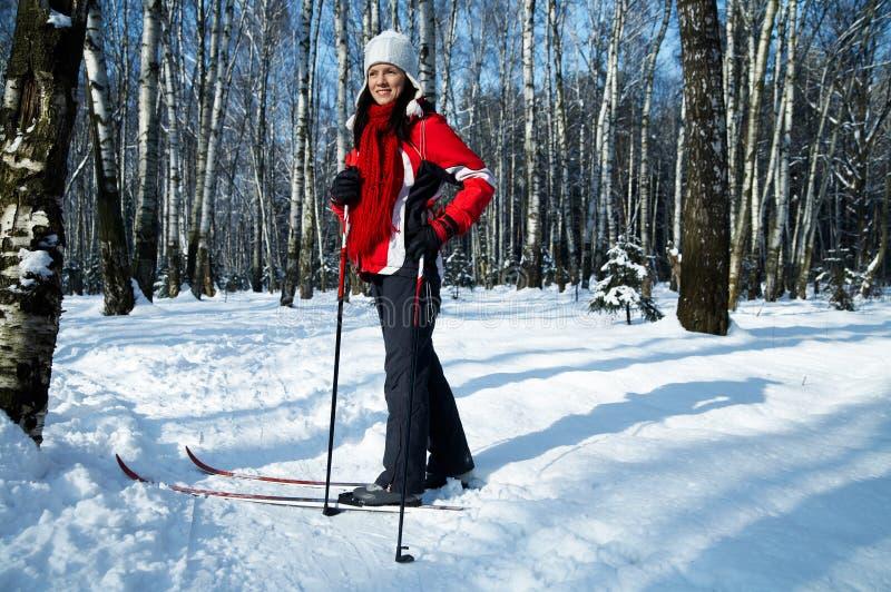 ski de forêt photographie stock