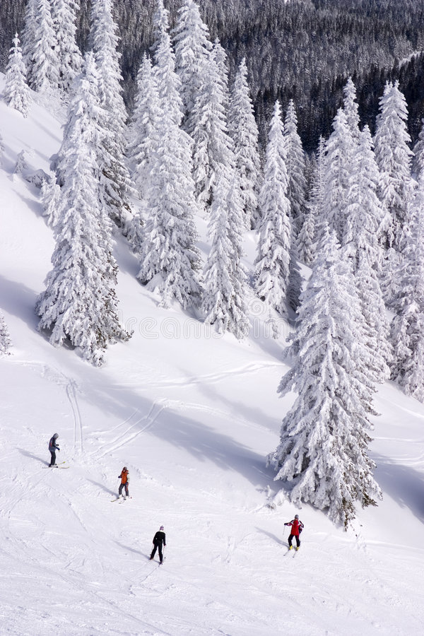 Ski de gens en bas de la pente photo libre de droits
