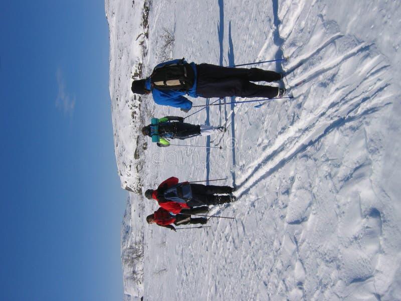 Ski de jeunes photo libre de droits