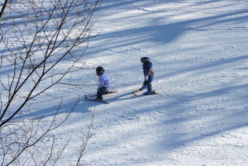 Ski de petites filles photographie stock