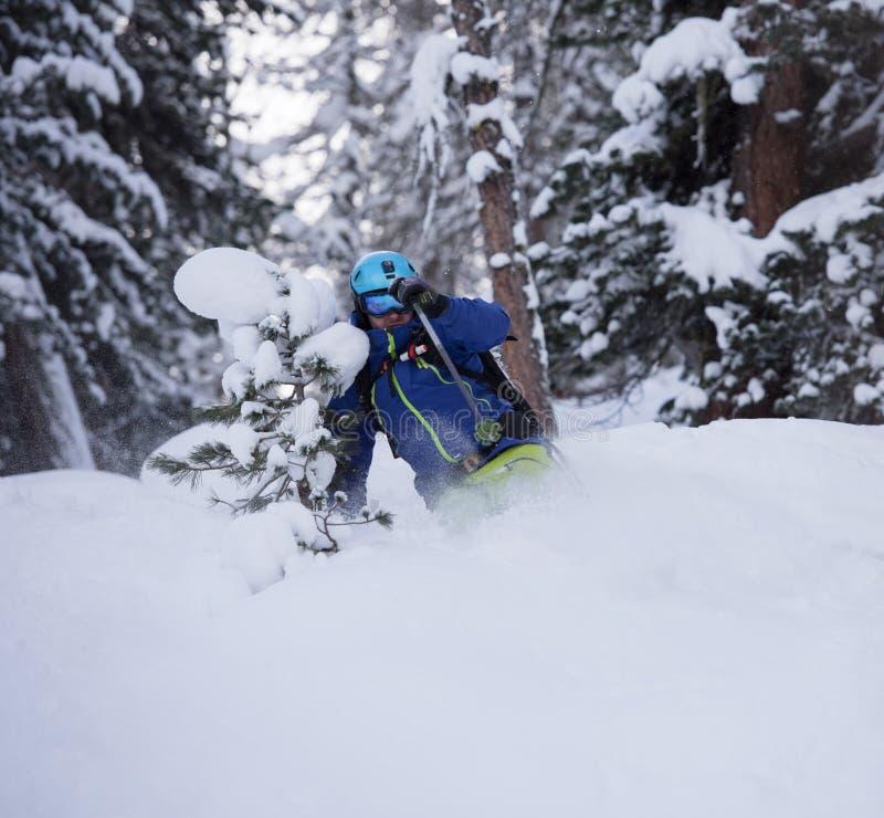 Ski de skieur de Freeride dans la neige profonde de poudre photo libre de droits