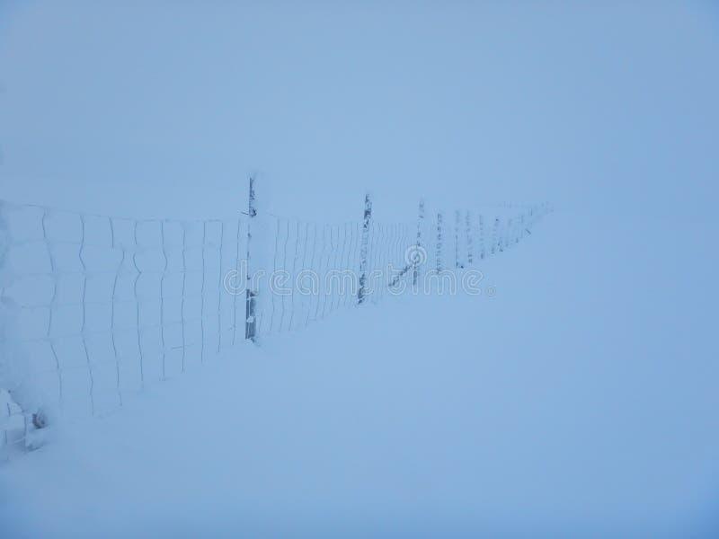 Ski?en het in het hele land in de noordelijke mooie aard van Lapland stock foto's