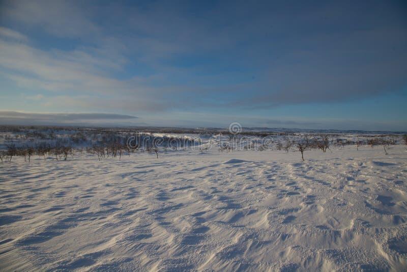 Ski?en het in het hele land in de noordelijke mooie aard van Lapland royalty-vrije stock foto's