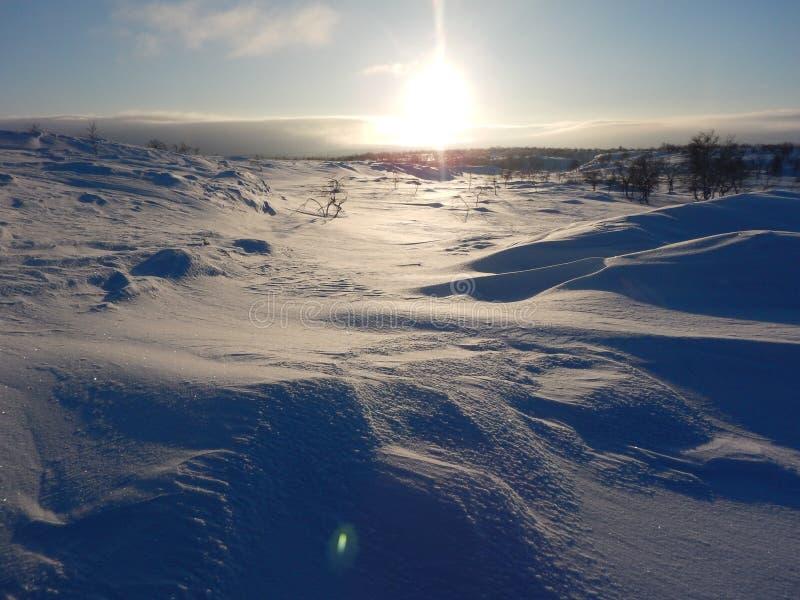 Ski?en het in het hele land in de noordelijke mooie aard van Lapland stock afbeeldingen