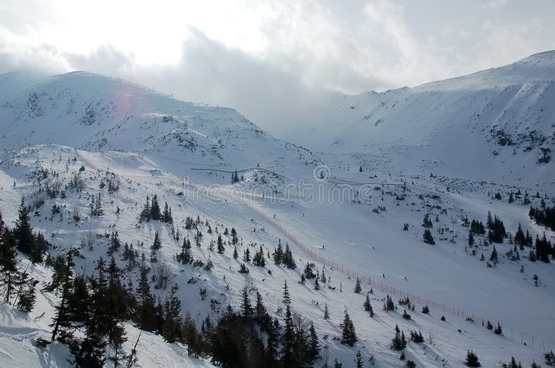 Ski en hiver photo stock