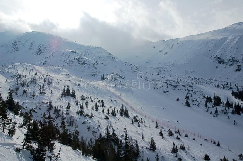 Ski fahren im Winter stockfoto