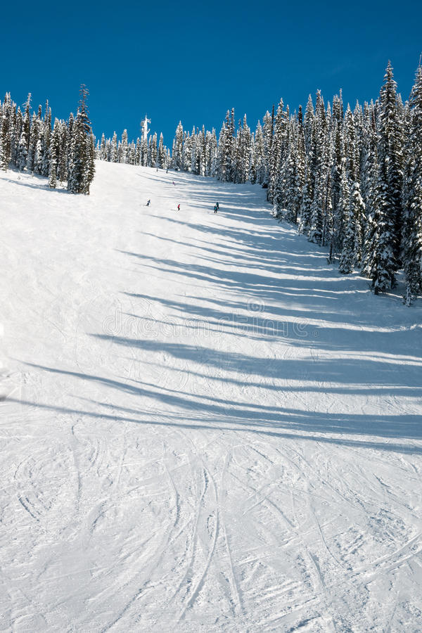 Download Ski hill stock photo. Image of winter, snow, skiers, snowy - 12927382