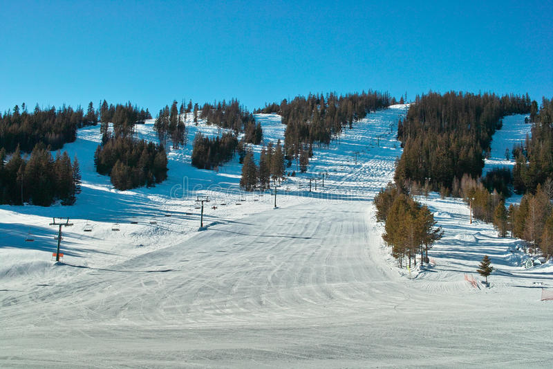 Ski Hill And Trees Stock Image