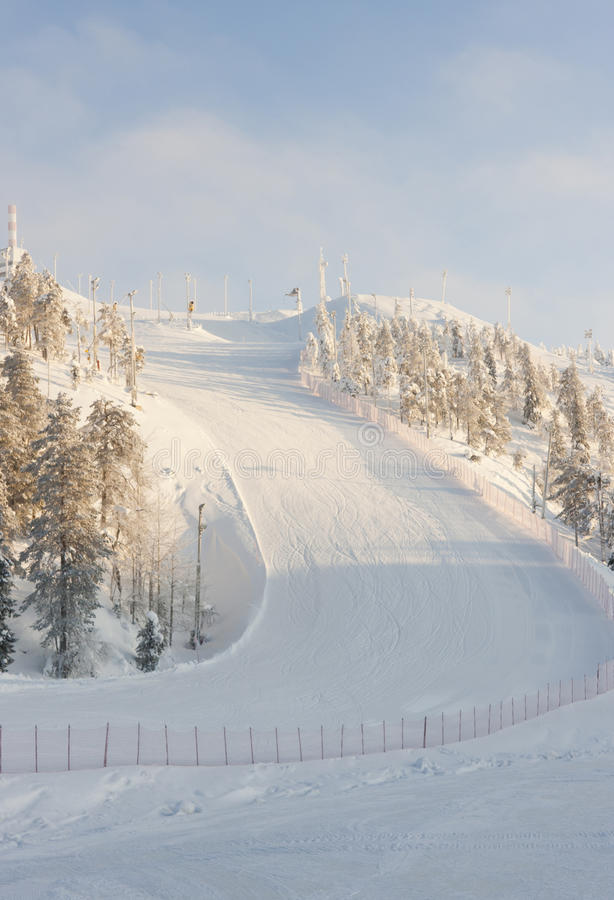 Ski mountain. A photo of a ski mountains surrounded by fir trees and red fence. The downfall of the hill is full of ski and snowboard tracks royalty free stock photos