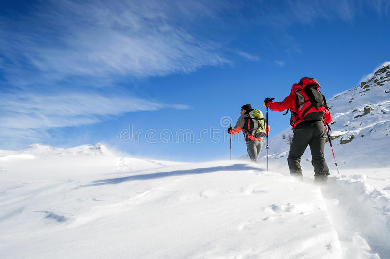 Ski mountaineering in snowstorm royalty free stock images