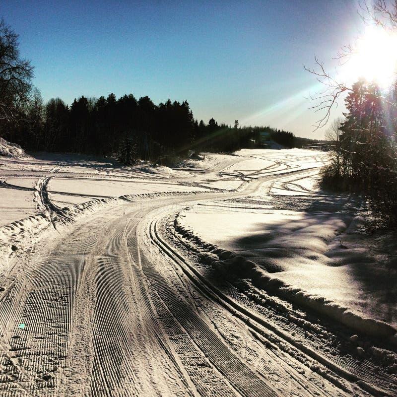 Ski in Norwegen stockbilder