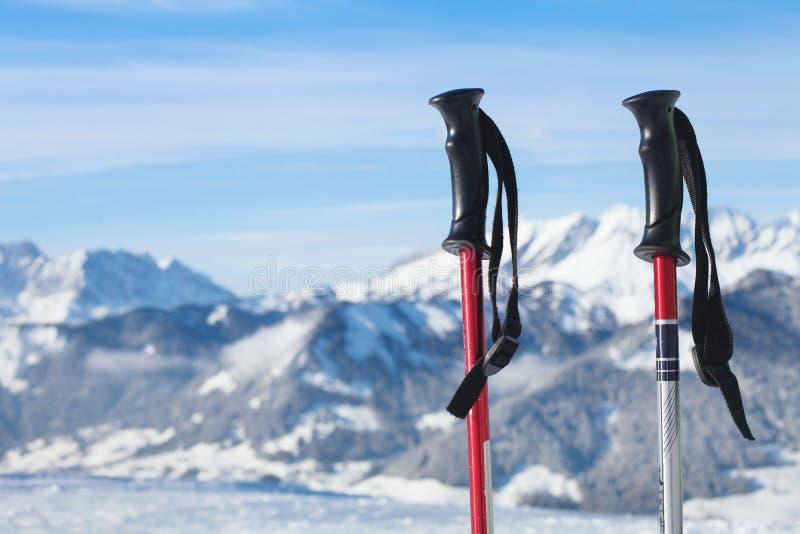Ski Poles imagem de stock