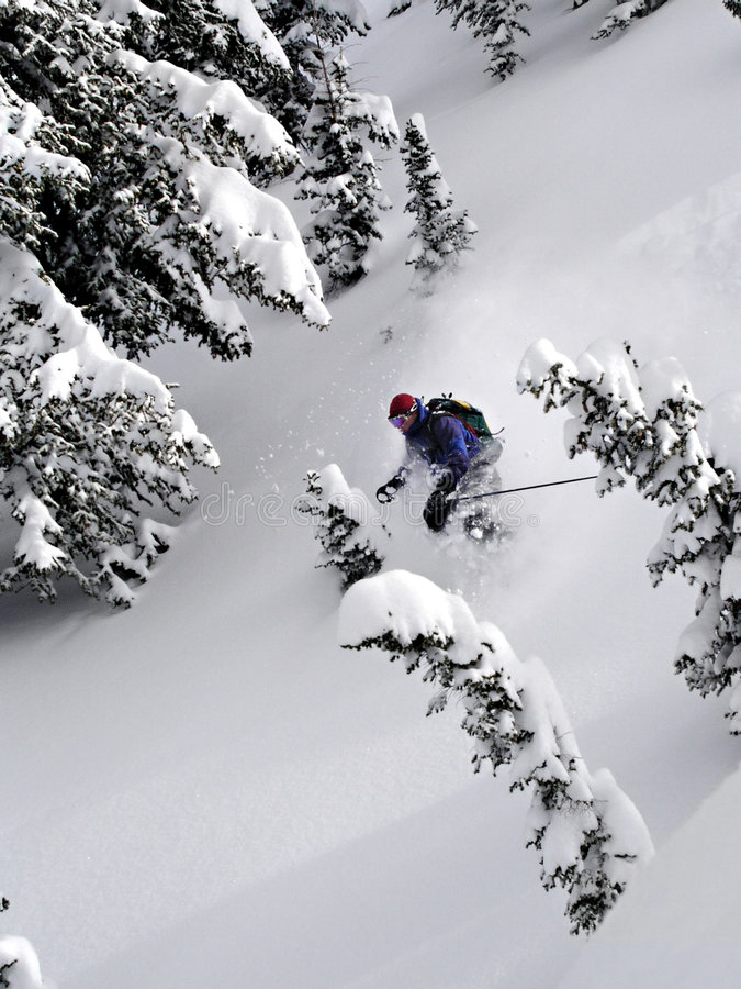 Ski Powder Royalty Free Stock Images