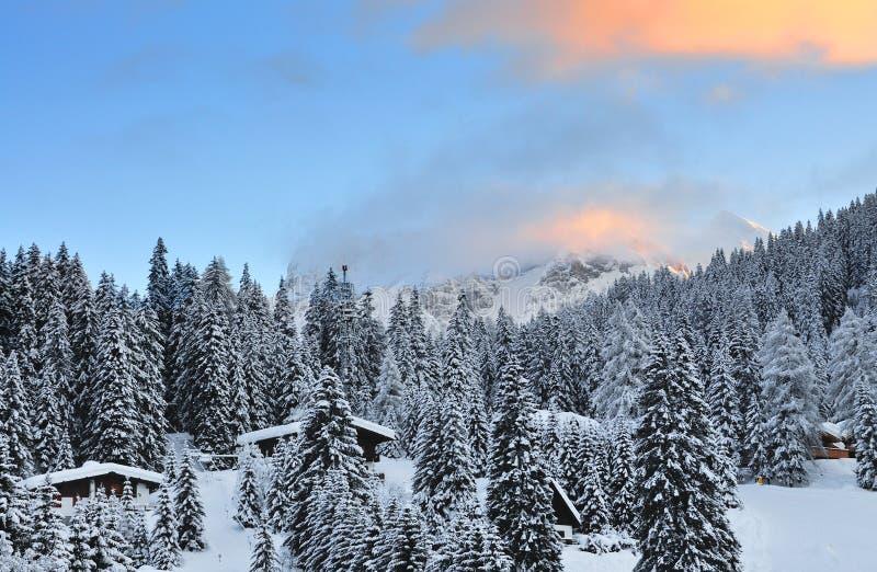 Ski Resort av Madonna di Campiglio i morgonen, italienska fjällängar, Italien fotografering för bildbyråer
