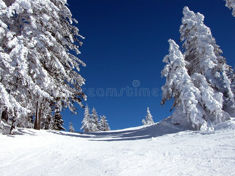 Download Ski slope 3 stock image. Image of blue, peak, forest, hills - 2179