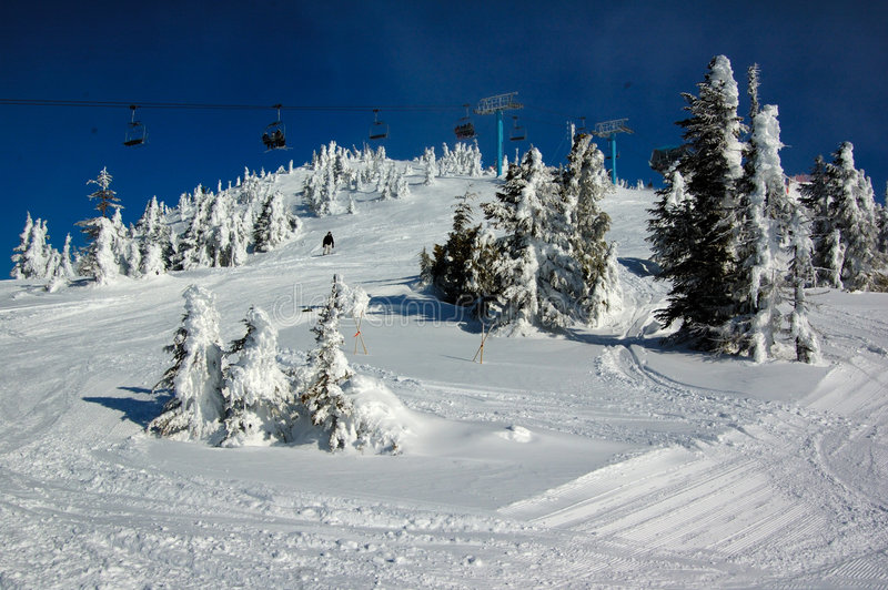 Ski slope in the snow forest royalty free stock photography