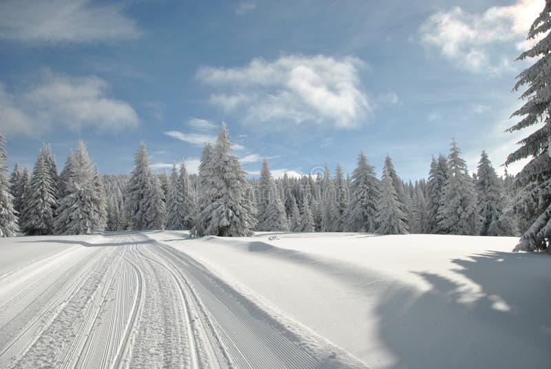 Ski sluttar arkivbilder