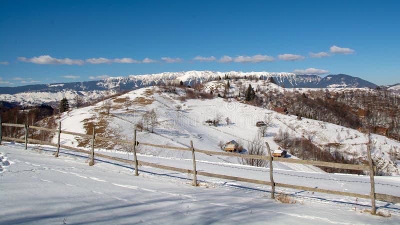 Ski, sneeuw, zon en pret met jonge geitjes op een sneeuwspoor, kind op ski stock foto