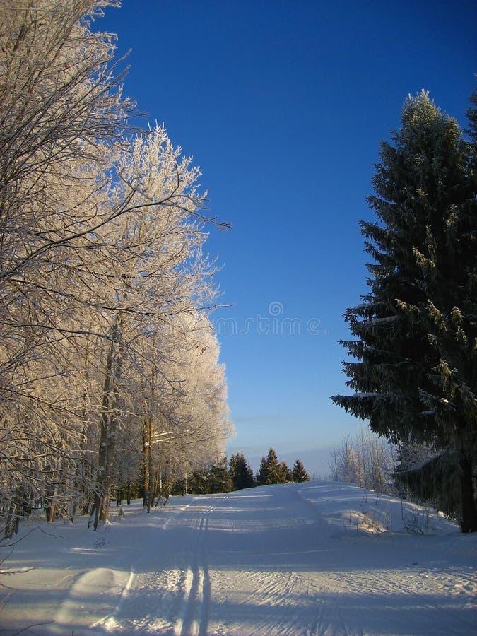 Ski-spoor stock afbeeldingen