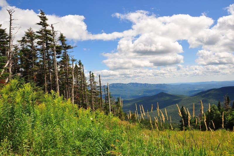 Ski-Steigung - Mt. Mansfield, VT stockfoto
