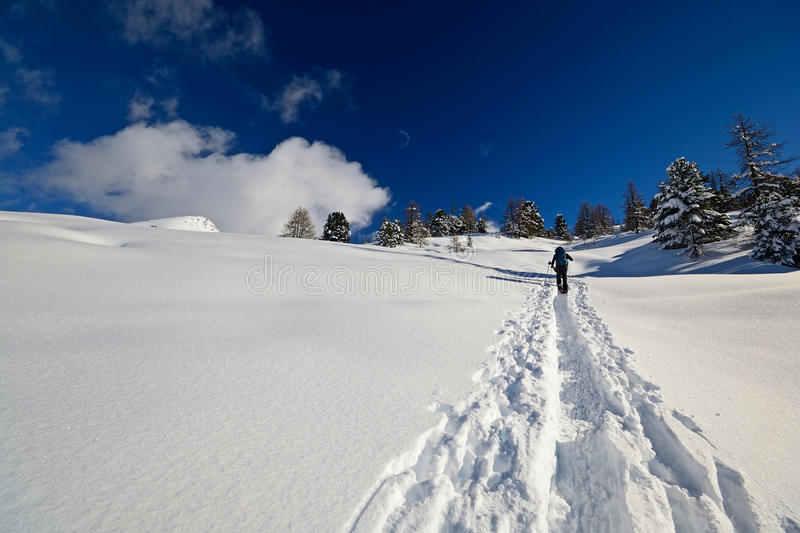 Download Ski touring in the Alps stock photo. Image of path, mountain - 28007372