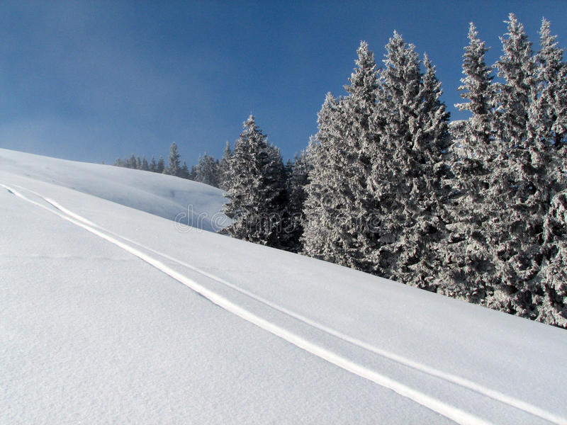 Ski traces royalty free stock photo
