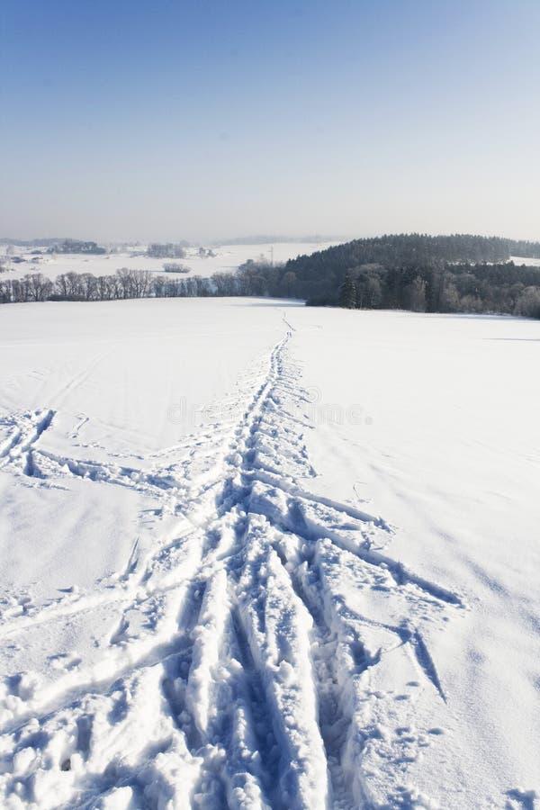 Download Ski track detail stock photo. Image of snow, tree, exercise - 21540730