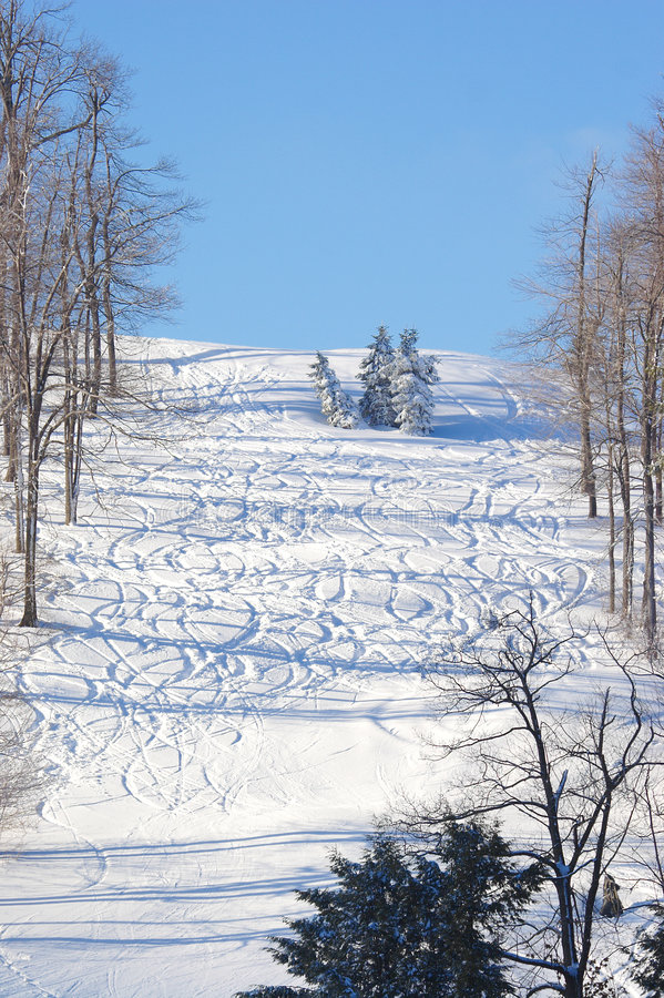 Free Ski Tracks Royalty Free Stock Photography - 475107