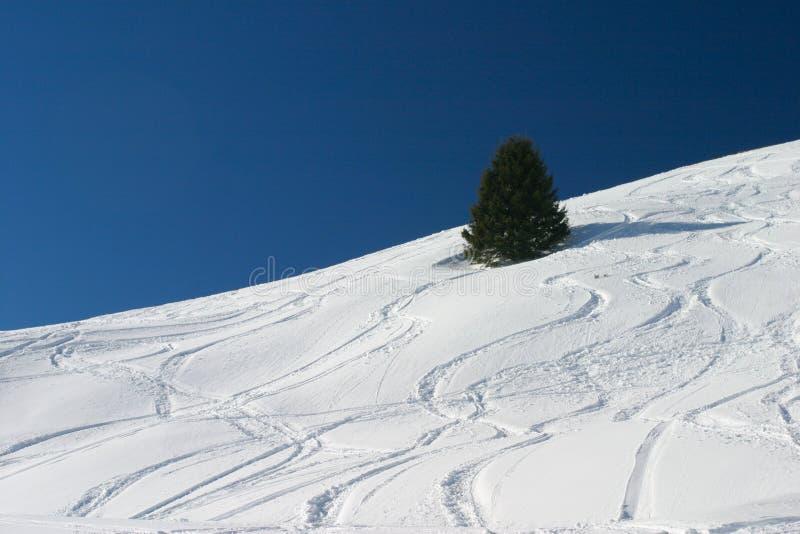 Ski Tracks Stock Photography