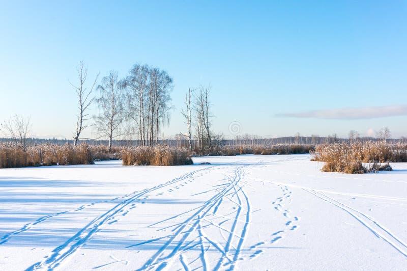 Ski Tracks imagem de stock royalty free