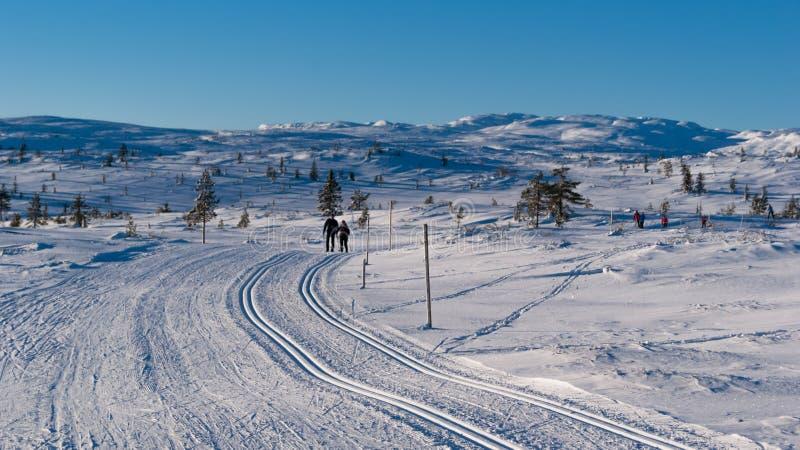 Ski Tracks imagen de archivo libre de regalías